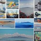 kapiti collage (4)